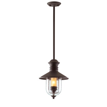 Old Town Hanging Lantern by Troy Lighting | F9362NB
