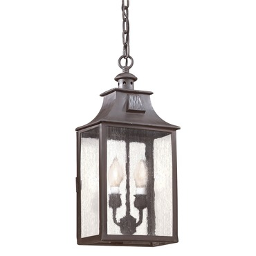 Newton Hanging Lantern by Troy Lighting | FCD9004OBZ
