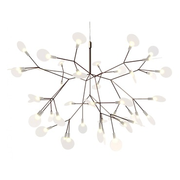 Heracleum LED Suspension by Moooi | ULMOLHERS---CC