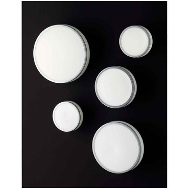 Jacky Ceiling Light by Carpyen | JACKY-WC-S-WH-GY
