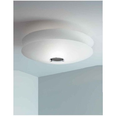 Odyssey Ceiling Light by Carpyen | ODYSSEY-I-WC-WH-CH