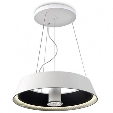 Ring Of Fire Suspension with Downlight by Leds Grok | LC-00-0054-05-BW-71