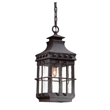 Dover Outdoor Pendant by Troy Lighting | FCD8973NB
