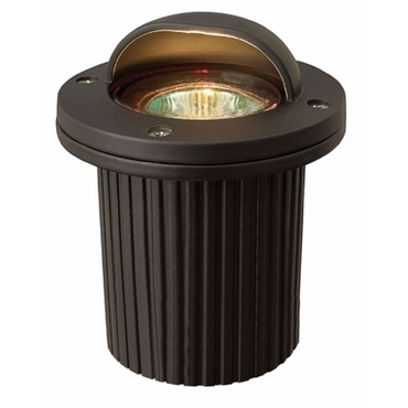 Low Voltage Shielded Well Light