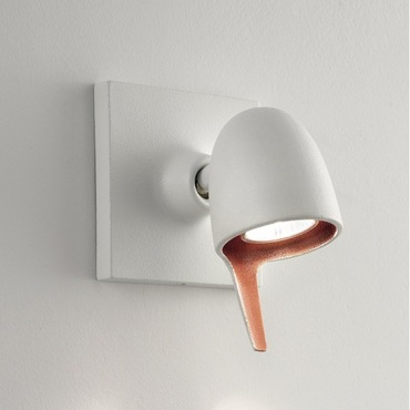 Coppa AP/PL Two Tone Wall Sconce