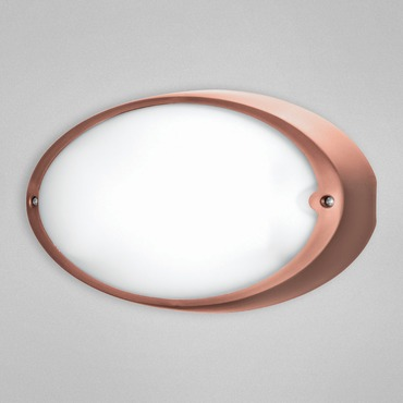 Airy Oval Indoor / Outdoor Wall / Ceiling Mount by Eurofase | 23886-049