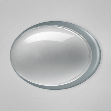 Class 11 Oval Indoor / Outdoor Wall Sconce