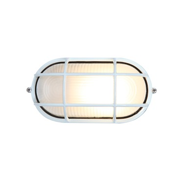 Nauticus Outdoor Wall / Ceiling Light by Access | C20290WHFSTEN1113BS