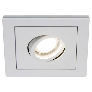 R4-DS88 4 Inch Square Adjustable Spot Trim