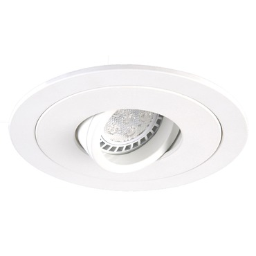 R4-DR88 4 Inch Round Adjustable Spot Trim