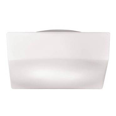 Amata Flush Mount / Wall Sconce