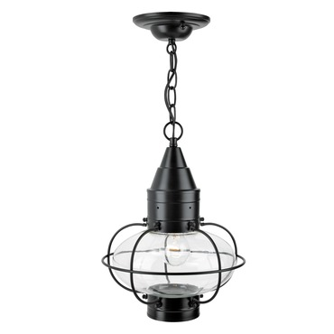 Classic Onion Outdoor Pendant by Norwell Lighting | 1508-BL-CL