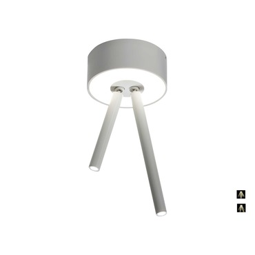 Virtus 2-Light Adjustable Ceiling
