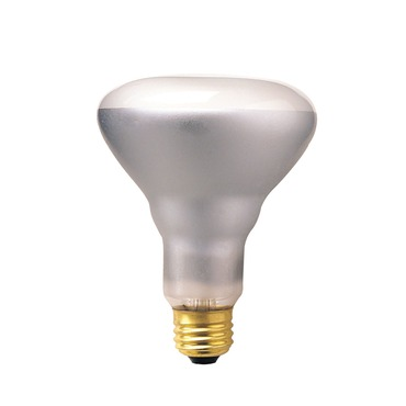 BR30 Med Base 65W Flood 470 Lumens 130V by Bulbrite | 248006