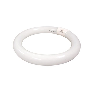 T9 Circline 4-Pin 40W 120V by Bulbrite | 502116