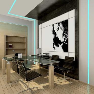 TruLine 1.6A RGB/White 12W 24VDC Plaster-In LED System