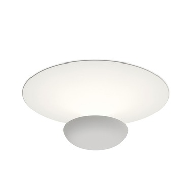 Funnel Wall/Ceiling Light