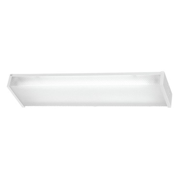 1010 Fluorescent Ceiling Mount
