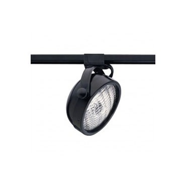 Round PAR36 Outdoor Track Head by Lightology Collection | ot-mac-bk