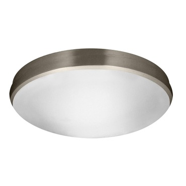 Satin Ceiling Led Light