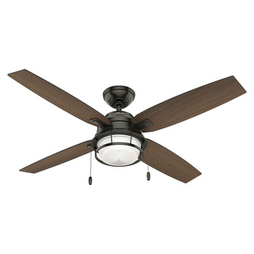 Ocala Outdoor Ceiling Fan With Light