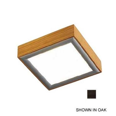 Frame Square Wall / Ceiling Mount