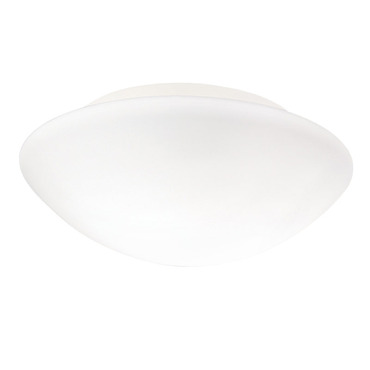 Janeiro Wall / Ceiling Mount by Illuminating Experiences | M330