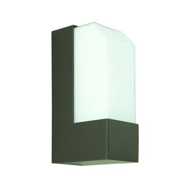 Observe Exterior Wall Sconce by CSL | SS1040-BZ