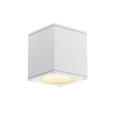 Big Theo Ceiling Out Exterior Wall Sconce
