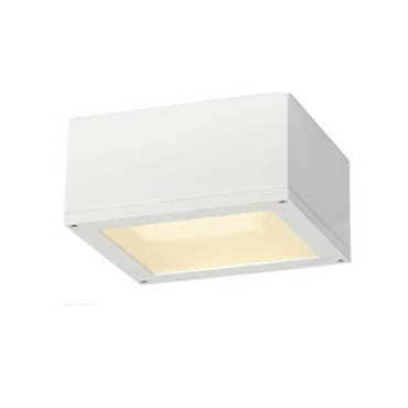 Theos Outdoor Ceiling Flush Mount