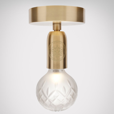 Crystal Bulb Ceiling Light Fixture