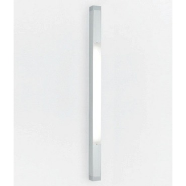 Two Square Strip T5HO Fluorescent Wall Light
