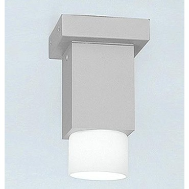 Dupla Halogen Ceiling Light