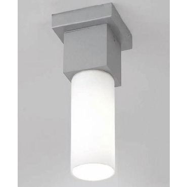 Dupla Indoor Outdoor Ceiling Light