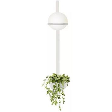 Palma Vertical Wall Light