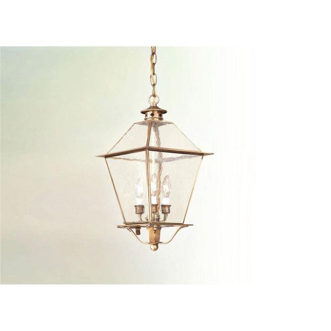 Montgomery Hanging Lantern by Troy Lighting | F8953NAB