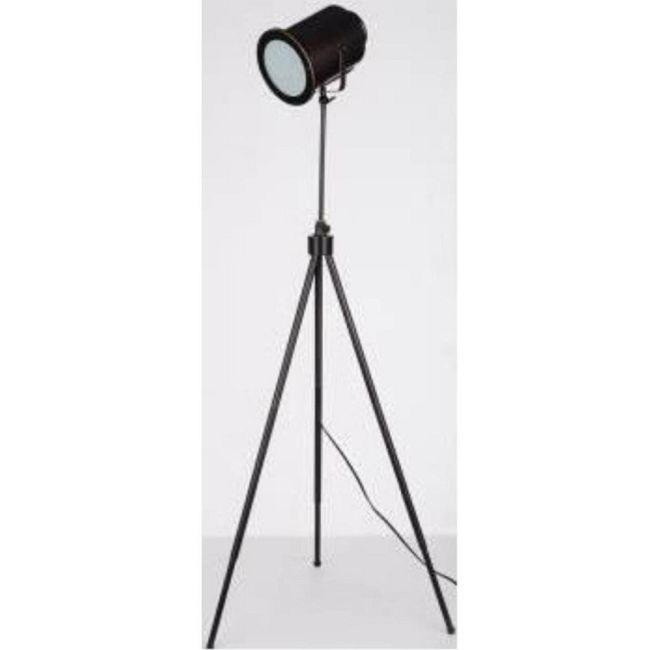Directeur Floor Lamp by Lite Source Inc.   LS-81724D/BRZ