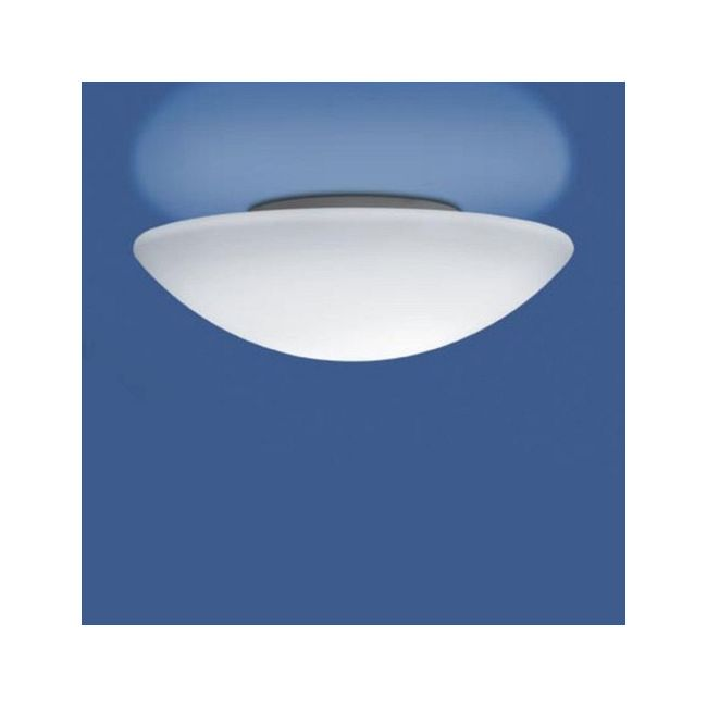 Janeiro K CFL Wall / Ceiling Mount by Illuminating Experiences | M10246-EM26W