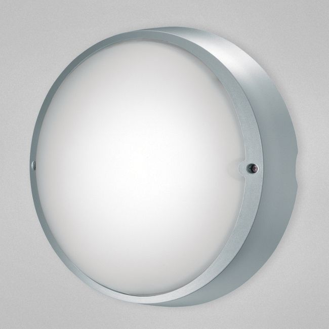 Airy Indoor / Outdoor Wall / Ceiling Mount by Eurofase | 23883-031