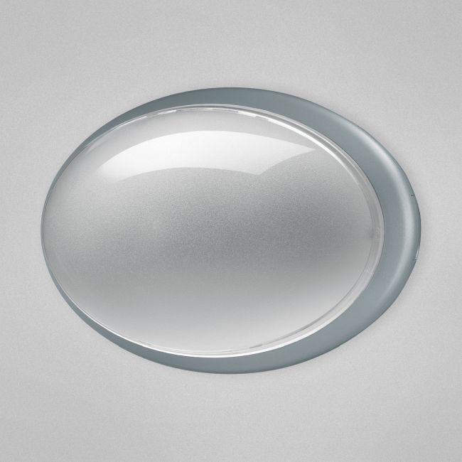 Class 11 Oval Indoor / Outdoor Wall Sconce by Eurofase | 23904-033
