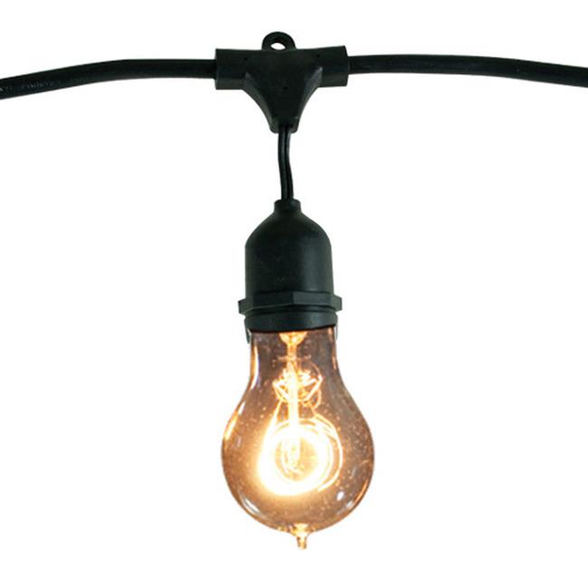 String Light Set A19 Med Base 48 Foot 15 Socket  by Bulbrite