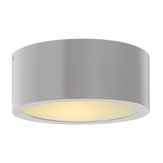 Luna LED Outdoor Ceiling Light Fixture  by Hinkley Lighting