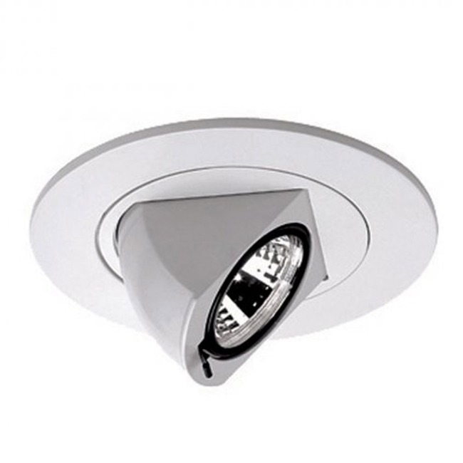 Low Voltage 4IN RD Premium Directional Spot Trim  by WAC Lighting