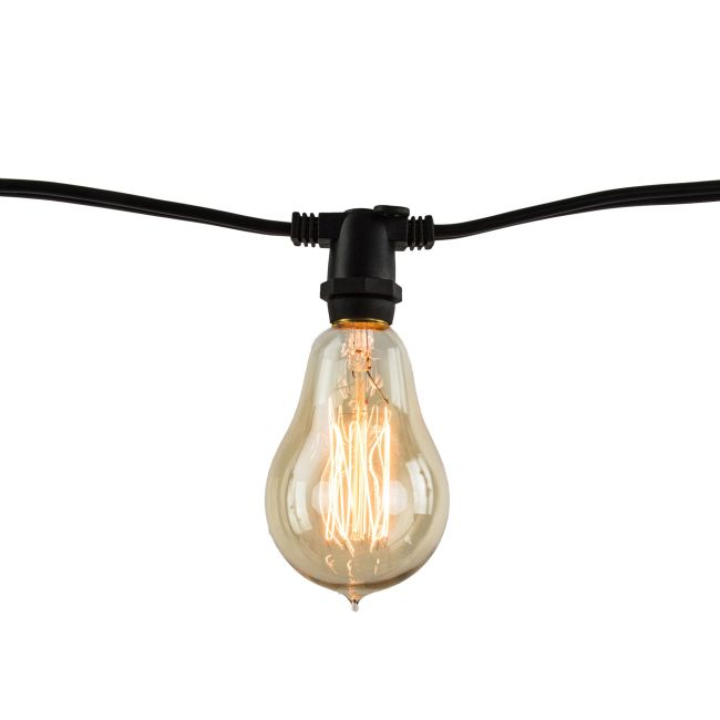 String Light Set A15 Candelabra Base 14 Foot 10 Socket  by Bulbrite