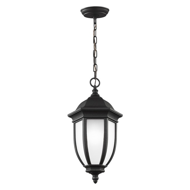 Galvyn Outdoor Pendant  by Sea Gull Lighting