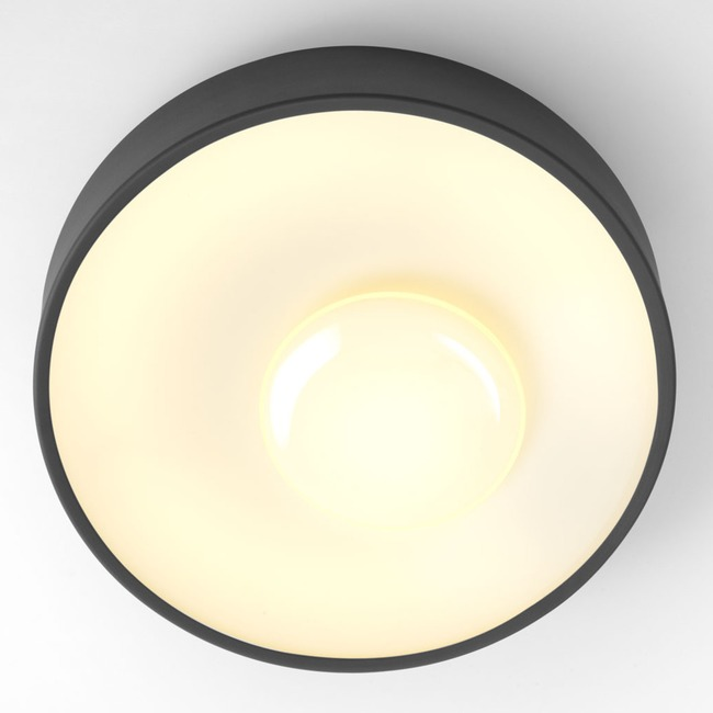 Sun Wall / Ceiling Light Fixture  by Marset