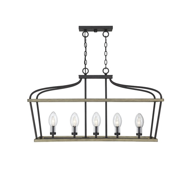 Danbury Outdoor Linear Chandelier  by Savoy House