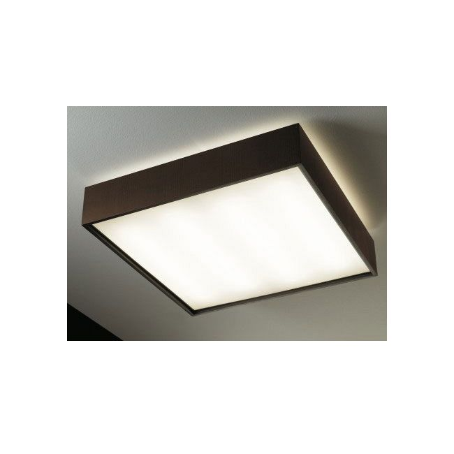 Quadrat Ceiling Light by Lightology Collection   661405U