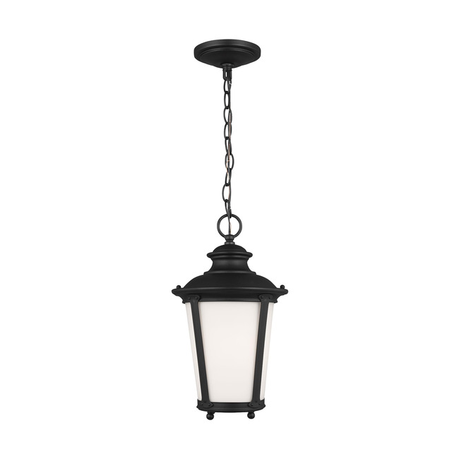 Cape May Outdoor Pendant  by Sea Gull Lighting