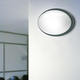 Class 11 Oval Indoor / Outdoor Wall Sconce - Grey / Frosted